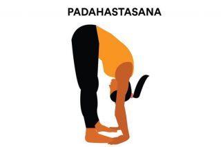 Padahastasana – hand to foot yoga posture
