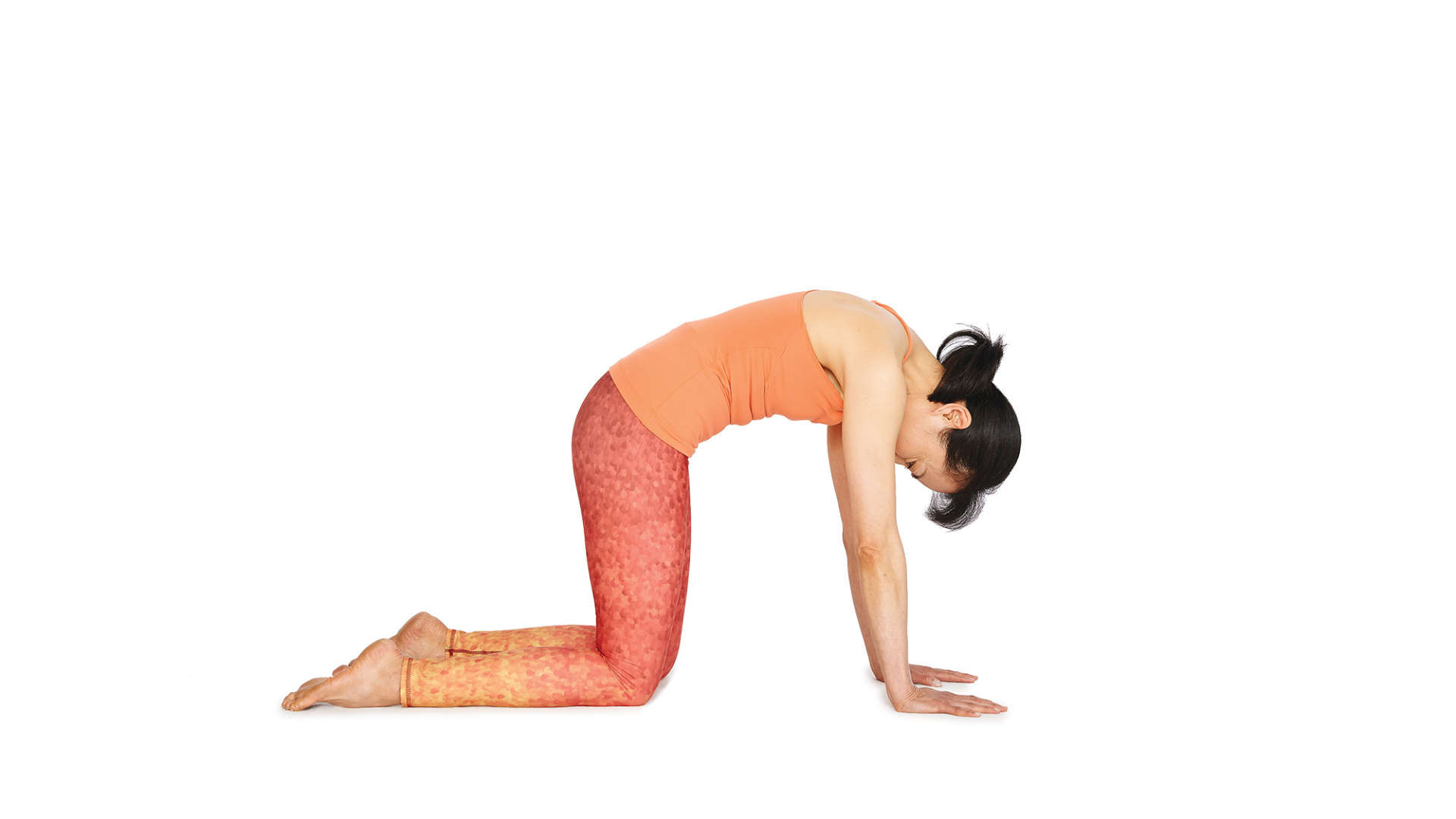 Yoga Position of the Month – August – Half Cat Pose