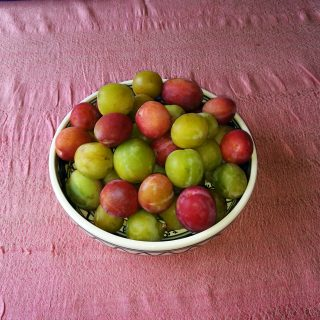 Plums, more plums and greengages!