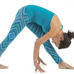 Yoga Posture for the Month – November – Standing forward stretch – Parsvottanasana