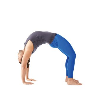 Izzy's yoga posture for the month of July – Ardha Purvottanasana (Crab Pose)